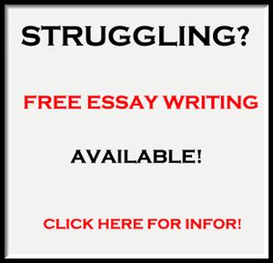 Help Essay   Koshoji Help Essay